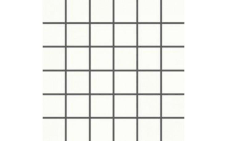 RAKO TENDENCE mozaika 5x5cm bílá WDM06050