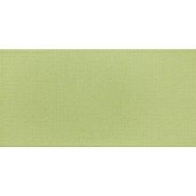 Obklad Rako Vanity 19,8x39,8cm zelená