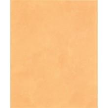 RAKO CANDY obklad 20x25cm světle oranžová WATGW647