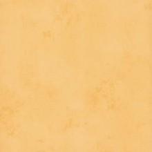 RAKO TULIP dlažba 33,3x33,3cm, oranžová