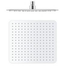 Sprcha hlavová RAV pro pevnou sprchu 30x30 kov