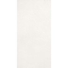 VILLEROY & BOCH BIANCO NERO dekor 30x60cm, white