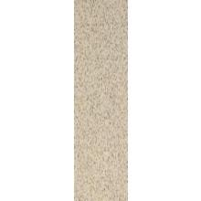 RAKO TAURUS GRANIT sokl 30x8cm, nevada