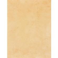 Obklad Rako Delta 25x33 cm oranžová