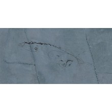 REFIN ARTE PURA dekor 37,5x75cm, grafismi baltico